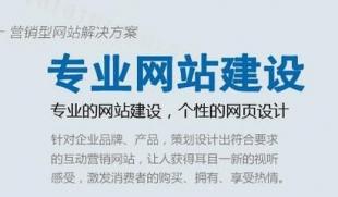武汉网站建设开发:新网站SEO需注意的问题